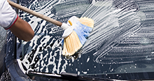 Brushes wisk away dirt without scratching the surface